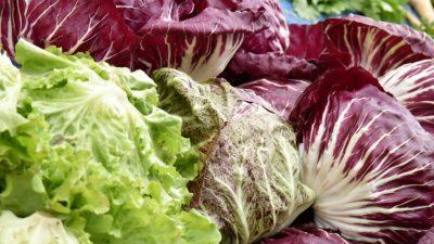 Zelena tržnica dolazi na Srdoče: Široka ponuda autohtonih i zdravih proizvoda @ Rijeka