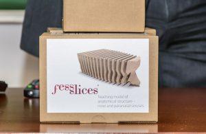 Znanstveno-edukativna inovacija na Medicinskom fakultetu: Predstavljen Fess slices @ Rijeka