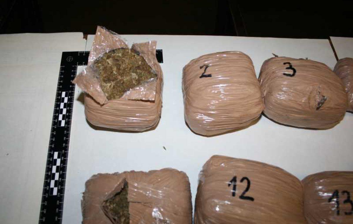 Tri Crnogorca i Kanađanka švercali 16 kilograma 'trave', razotkrio ih policijski pas @ Učka