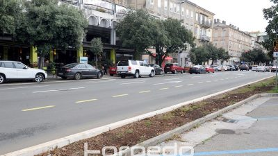 Nakon uklanjanja živice, slijedi sadnja oleandra na Rivi – Parkiranje privremeno zabranjeno do srijede