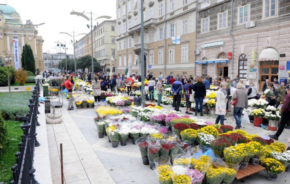 Središte grada u bojama krizantema