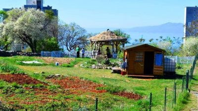 Nova Zelena radionica održat će se ove subote u RiHubu i baviti će se kućnim kompostiranjem
