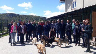 Održana edukacija komunalnih redara o obavezama i ovlastima kod postupanja sa životinjama