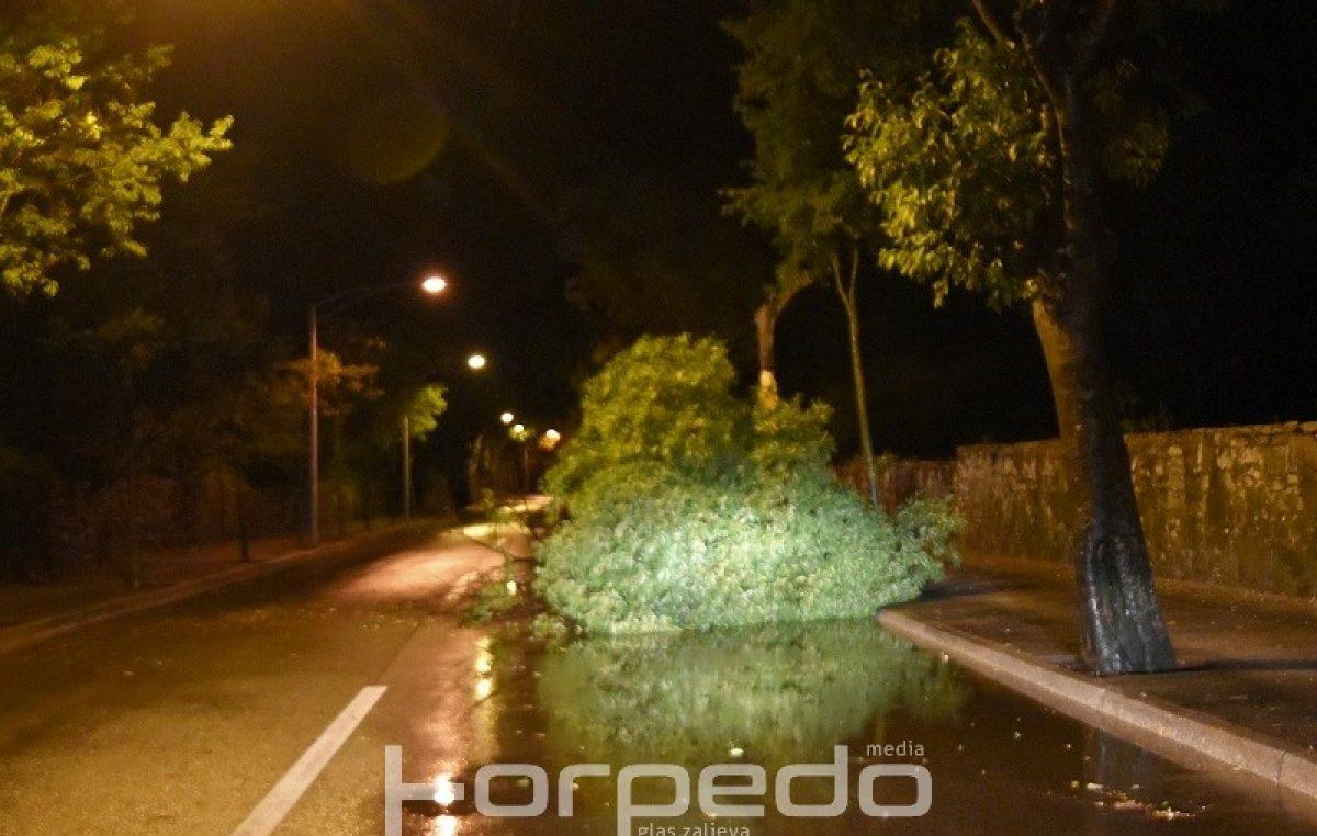U OKU KAMERE Uz osvježenje, prvi pravi ljetni neverin donio i neželjene posljedice poput stabala srušenih na ceste