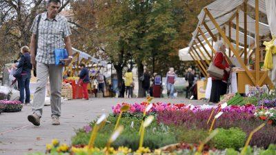 U OKU KAMERE Šarenilo i ljepota u centru grada – Zamirisao je Cvjetni sajam na Kontu