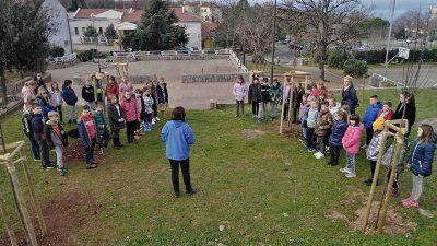Akcija sadnje ukrasnih voćki – Svaki razred OŠ Kostrena posadio svoje stablo