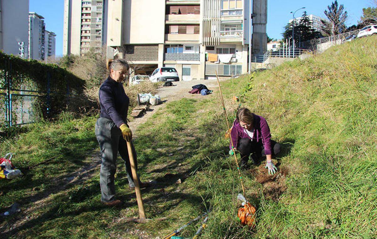 Tranzicijska inicijativa Rijeka sadnjom voćki i gradnjom drvene sjenice oplemenila zelenu površinu na Mlaci