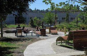 Predavanje eminentnog krajobraznog arhitekta Daniela Winterbottoma – Kako će izgledati terapijski vrt KBC-a Rijeka