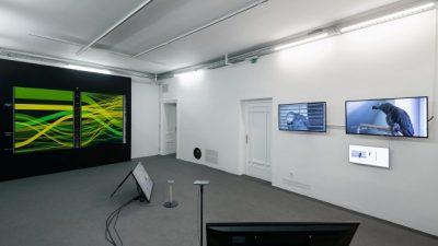 """Kako izgleda umjetnički opus pretočen u podatke pokazat će nam izložba Sanele Jahić """"Nesigurnost u petlji"""""""