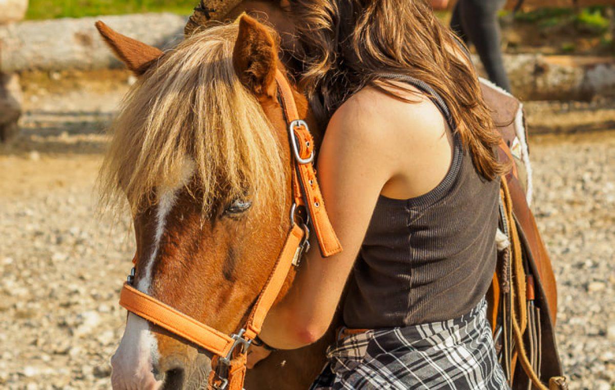 Šaptač konjima na kaubojski način, dvodnevna radionica u kaubojskom selu Roswell